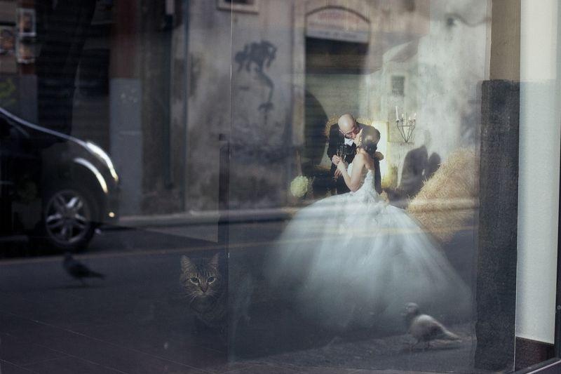 Любовь и голуби.photo preview