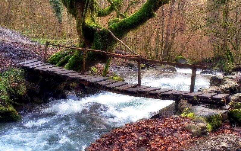 мостик река Мостик. Времена года.photo preview