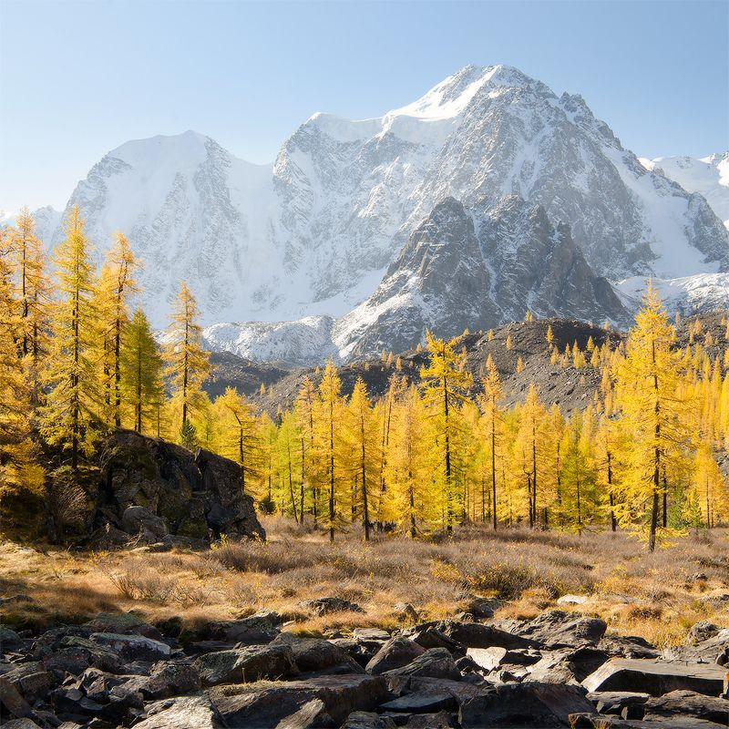 Алтай, Шавла в прозрачном воздухеphoto preview