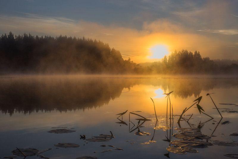 рассвет солнце река утро природа пейзаж Театральное представление на реке Кременка.photo preview