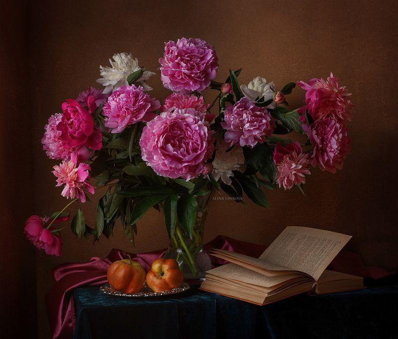 натюрморт, фотонатюрморт, цветы, пионы, розовые пионы, книга, яблоко, вечер, лето, алина ланкина, свет, still life ***photo preview