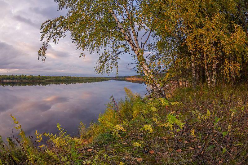 осень вечер река березы обрыв небо штиль разноцветная осеньphoto preview