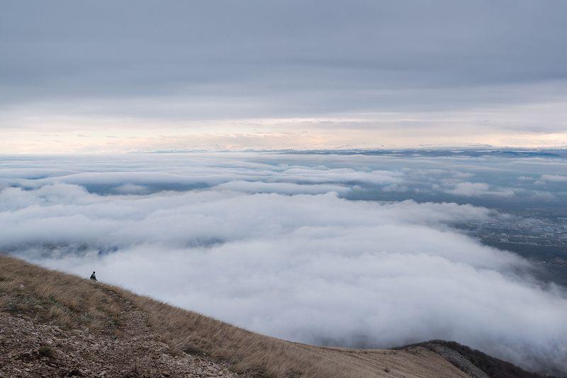 Кавказ, Бештау, КМВ Вид с вершины Бештауphoto preview