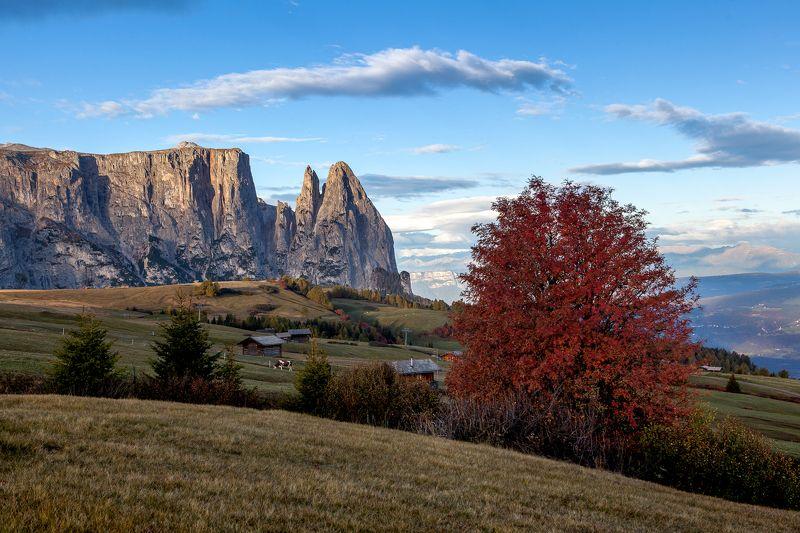 italy, dolomiti, mountains, landscape, Alpe di Siusiphoto preview