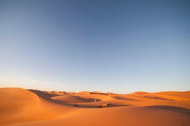 Открытка из пустыниphoto preview