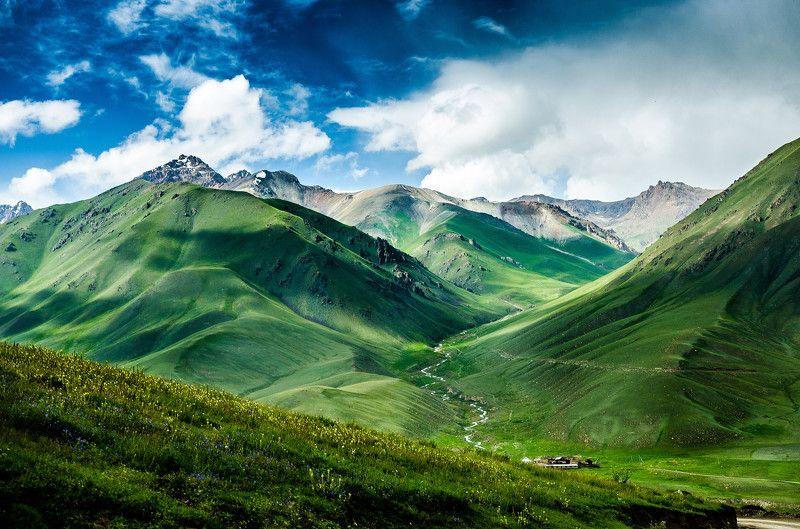 горы, природа, пейзаж, лето, перевал, зелень Калмак-Ашууphoto preview