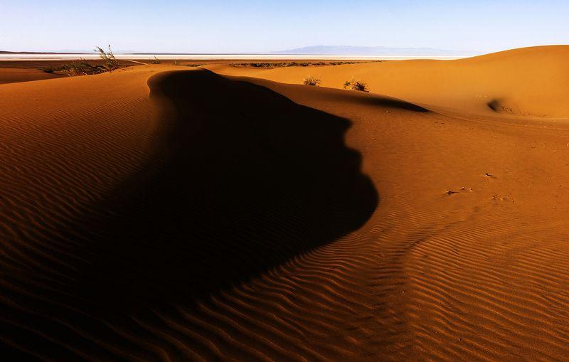 desert Facephoto preview