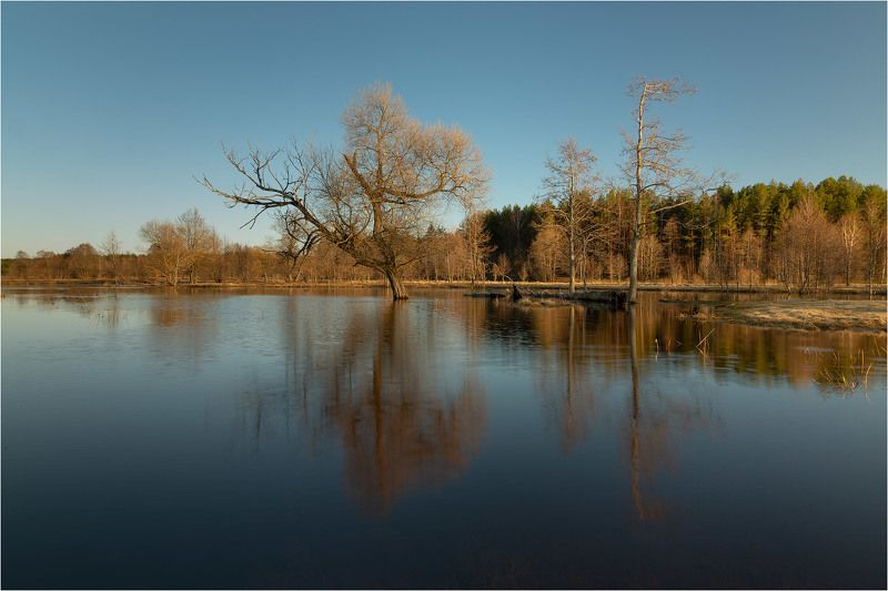 Весна. Большая водаphoto preview
