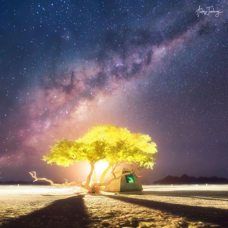 tent, tree, moon, moonrise, universe, milky way, light, desert, namibia, namib, camp, shadows, stars, night, nightscape, silhouette,  sossusvlei,  палатка, дерево, луна, рассвет, закат, вселенная, млечный путь, намибия, намиб, соссусфлей, лагерь, тени, зв Краткая история о Вселенной, Луне и маленькой палатке под деревом где-то на планете Земля (Намибия,  Соссусфлей)photo preview