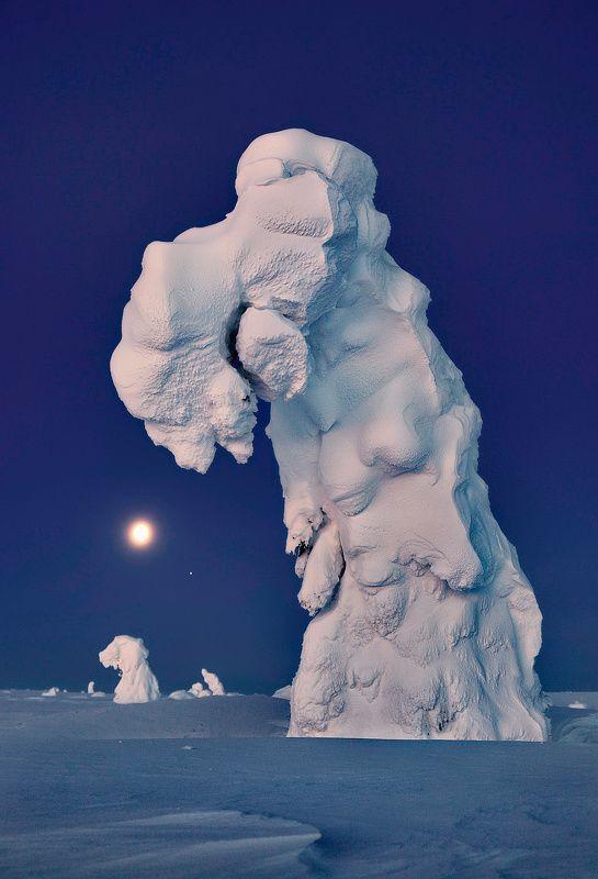 Сладкий сон в лунную ночьphoto preview