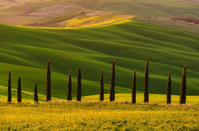 Tuscany, Crete Senesi, spring, valley, Тоскана, cipreses Тосканские мечтыphoto preview
