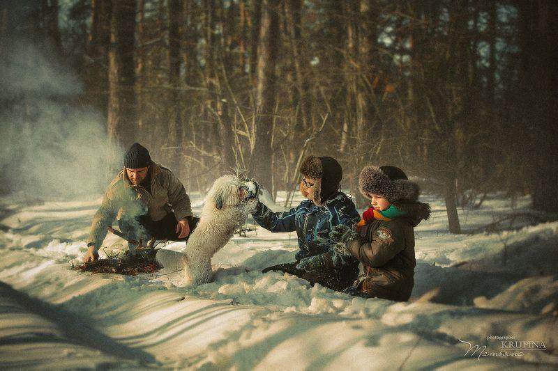 семья, зима, лес, природа, собака, дети, костер, отдых photo preview
