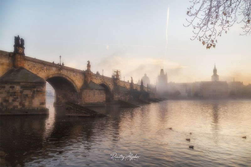 Прага, Чехия, Карлов мост, утро, туман, Влтава, река, мост, природа, путешествие, фототур, Илышев Карлов мостphoto preview
