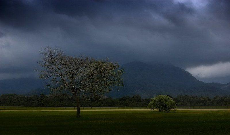 сезон дождейphoto preview