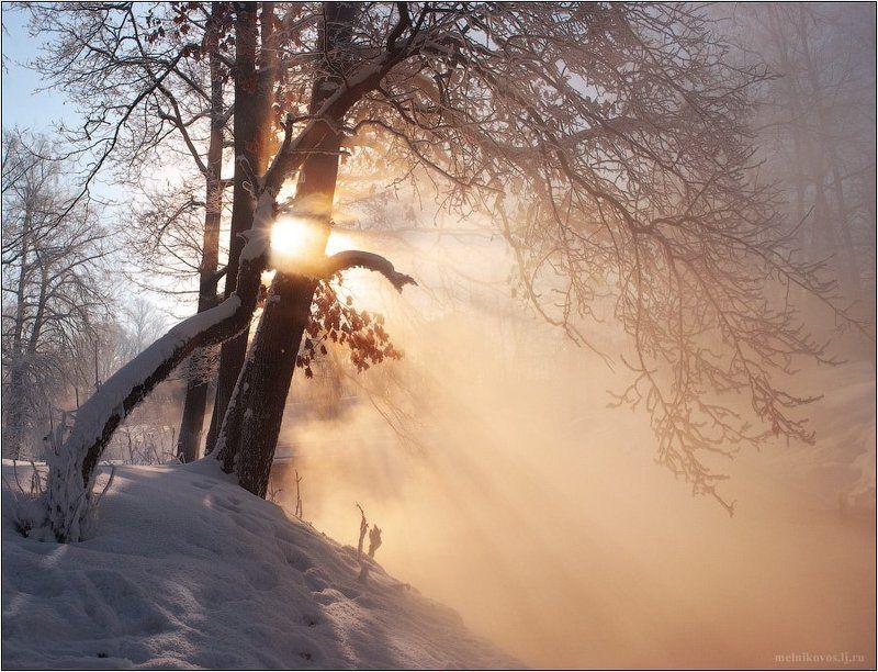 Радость утреннего солнцаphoto preview