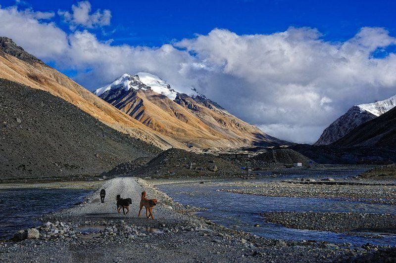китай, тибет, эверест Дорога к Эверестуphoto preview
