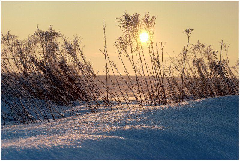 Я уже и забыл как выглядит эта земля без снега..photo preview