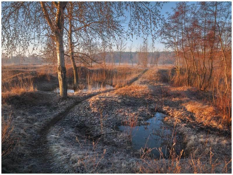 весна,луг,пейзаж,рассвет,тропинка,утро,весенний пейзаж,заморозок,паводок,весеннее фото Прогулка весенним утромphoto preview