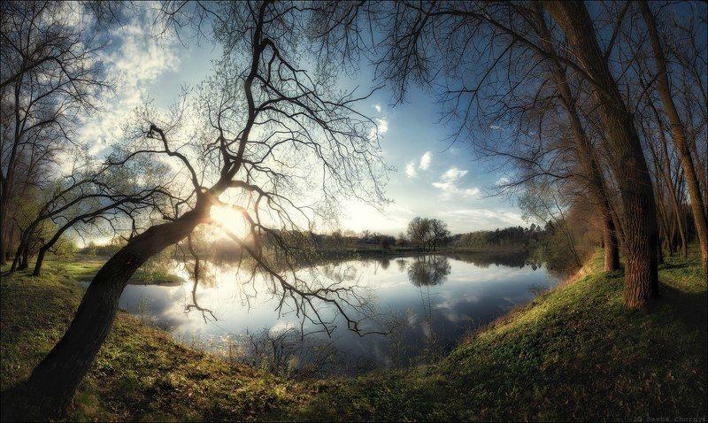 украина, коростышев, весна, река, тетерев, Тянут деревья руки-ветви к водеphoto preview