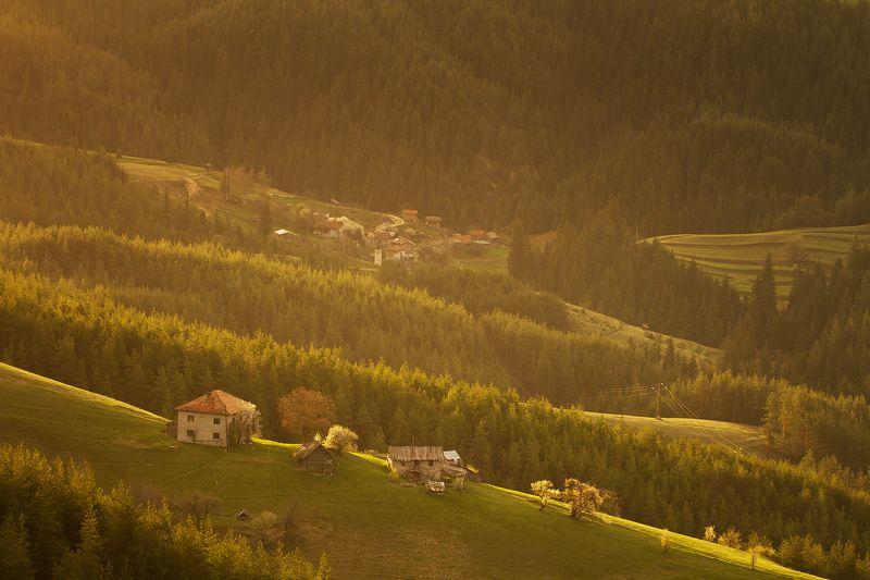 mountain, forest, spring, bulgaria Springphoto preview
