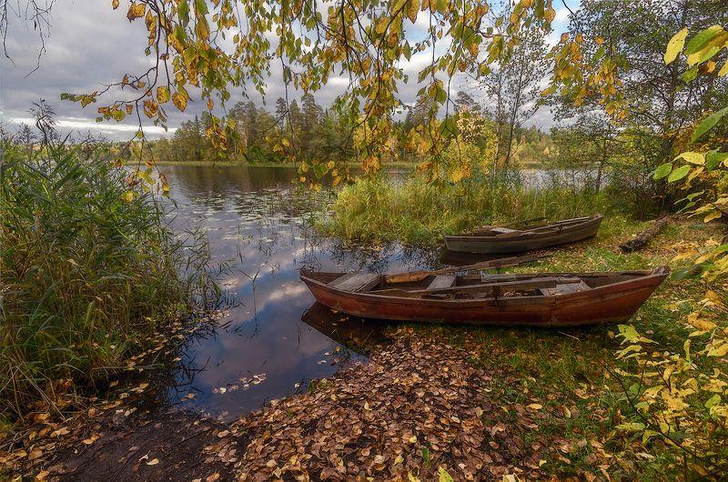 осень озеро лодка желтый листья камыш лес про осень и лодочкиphoto preview