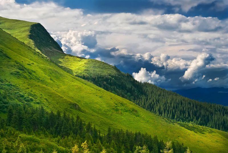 Оксамитові гори...photo preview