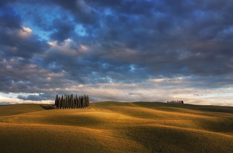 Тосканский велюр фото превью