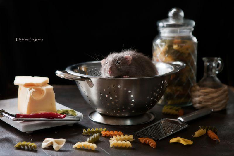 Эксклюзивный рецепт пастыphoto preview