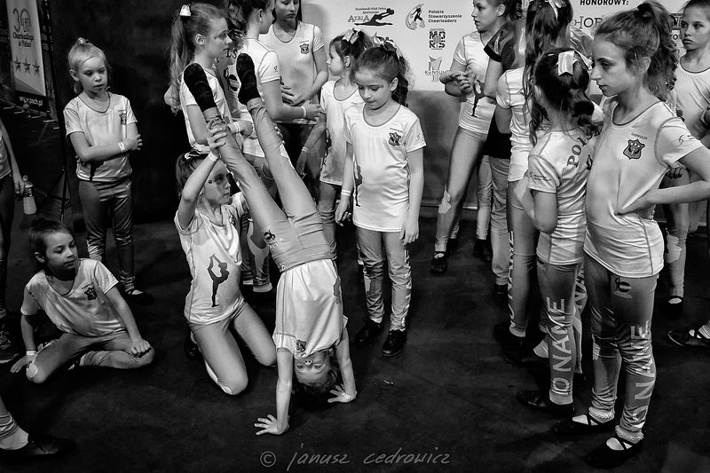cheerleaders,cheerleader,cheerleading,chorzow,poland,silesia,sport,championship, cheerleadersphoto preview