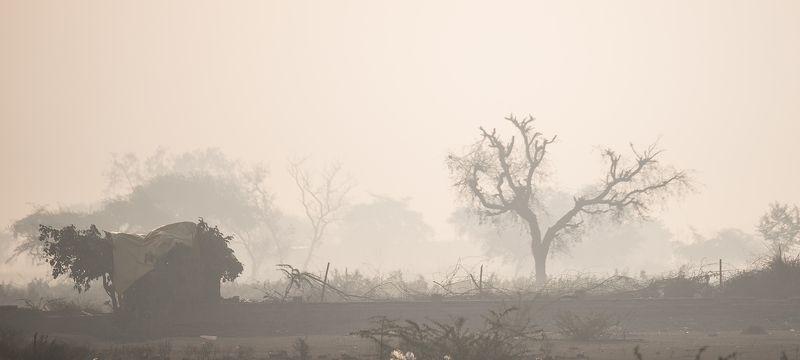 утренний туманphoto preview