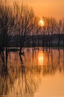Апрельское утреннее солнце