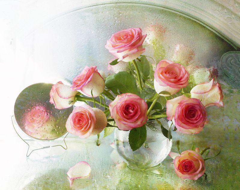 Розы всегда говорят о прекрасном..photo preview