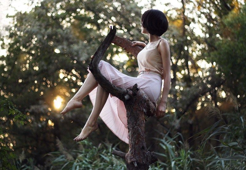 girl, model, tree, sunset, beautiful, portraiture The Dreamerphoto preview
