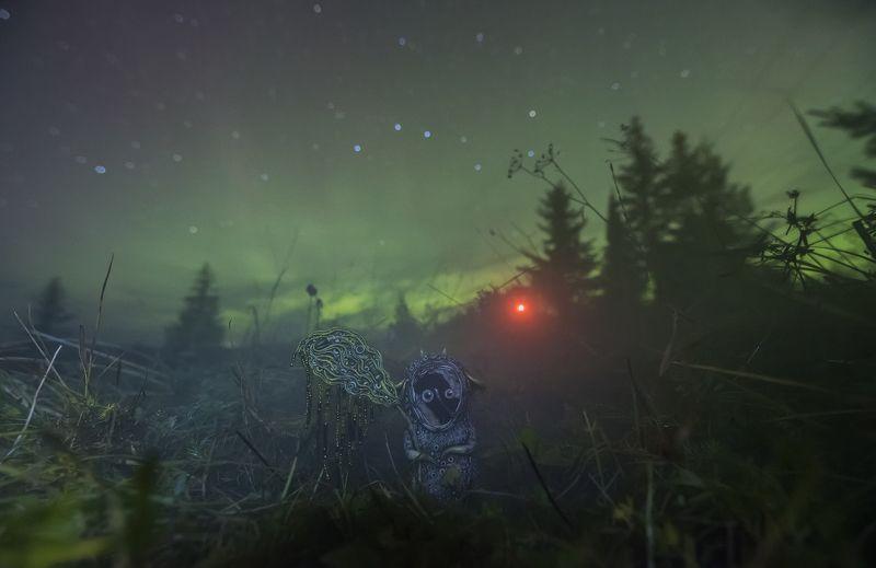 северное сияние, звезды, ночь, верхняя тойма,  Aurora Borealis, stars,  night, river ловец северного сиянияphoto preview