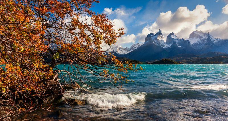 патагония, горы, рассвет, торрес дель пайне Бирюзаphoto preview
