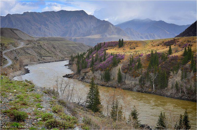 алтай, весна, горы, катунь Весна в горном Алтаеphoto preview