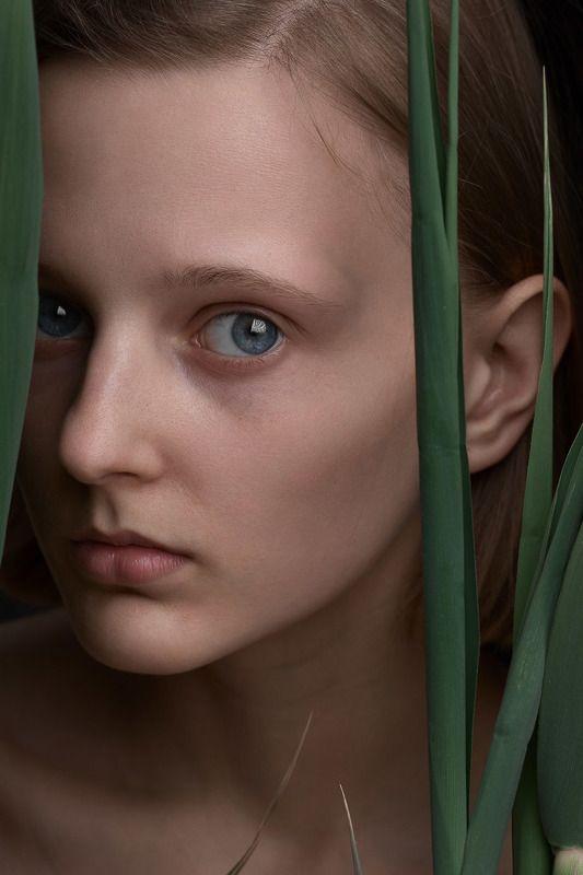 Портрет, женский портрет, девушка, взгляд, Россия  Ксюшаphoto preview