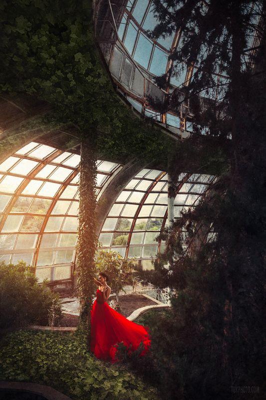 red dress оранжерея ботсад дендрарий пейзаж закат Redphoto preview