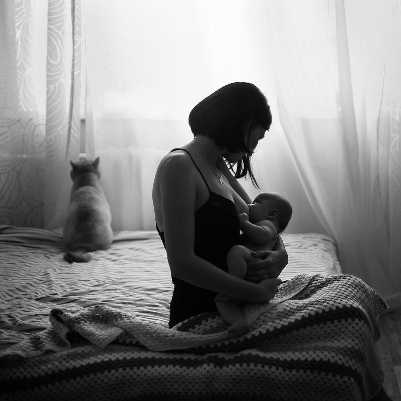 материнство мама новорожденный кормлениегрудью малышка кот Котphoto preview
