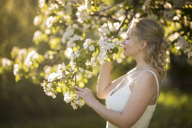 цветущая веснаphoto preview