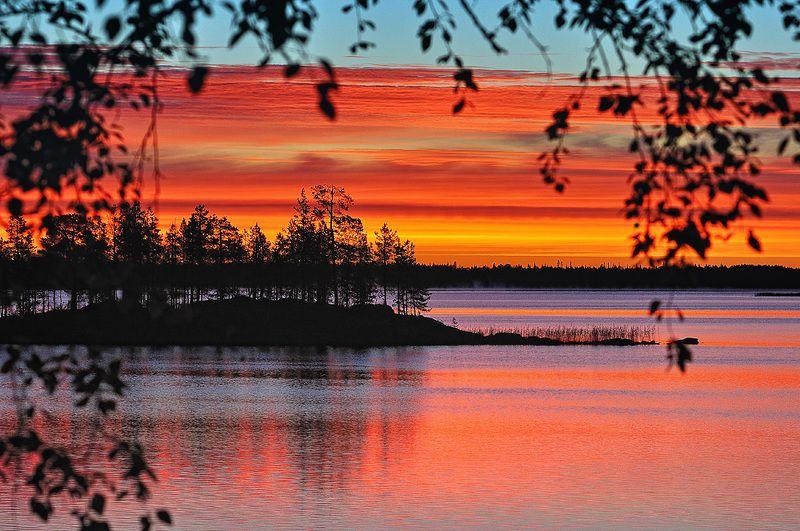 карелия, закат, озеро, белые, ночи Закат на озере Вороньемphoto preview