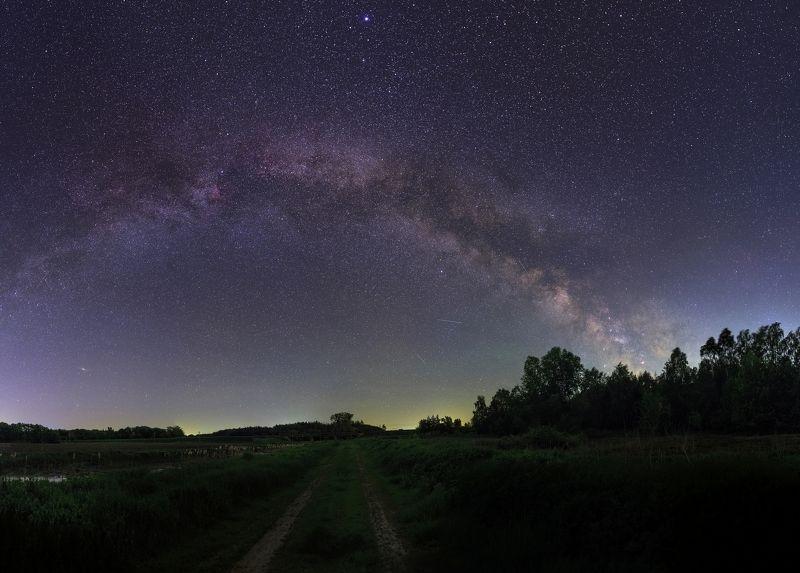 ночь, майская ночь, роща, звезды, Млечный путь, ночой пейзаж, nightscape, night, Milky Way, stars, May Соловьиная пораphoto preview