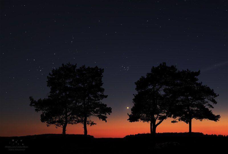 астрофото, ночь, звезды, Венера, Плеяды, закат, деревья, силуэты  Волшебное времяphoto preview