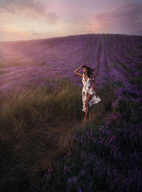 lavender лаванда лавандовые поля крым blossom  Влада Лавандаphoto preview