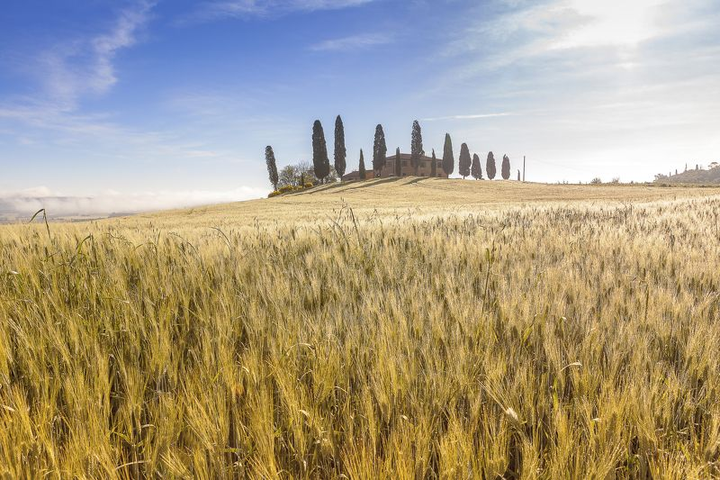 Italy, Tuscany, Pienza, Landscape Tuscanyphoto preview