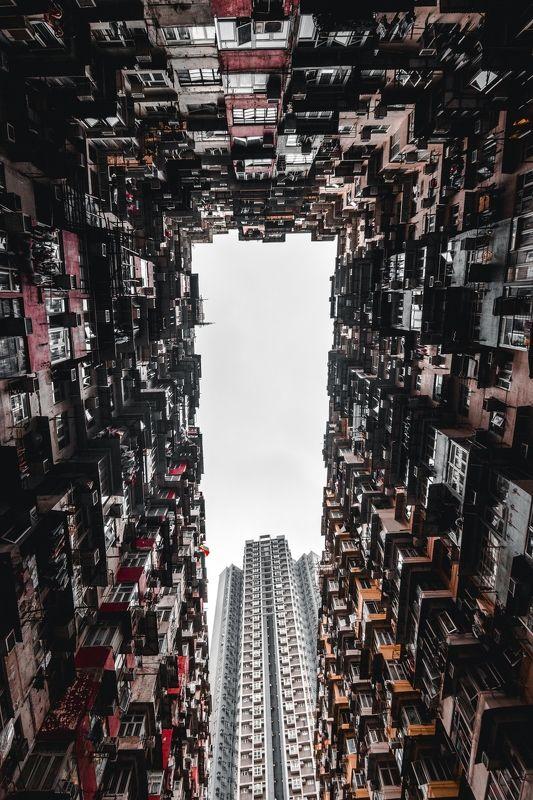 canon Hong Kongphoto preview