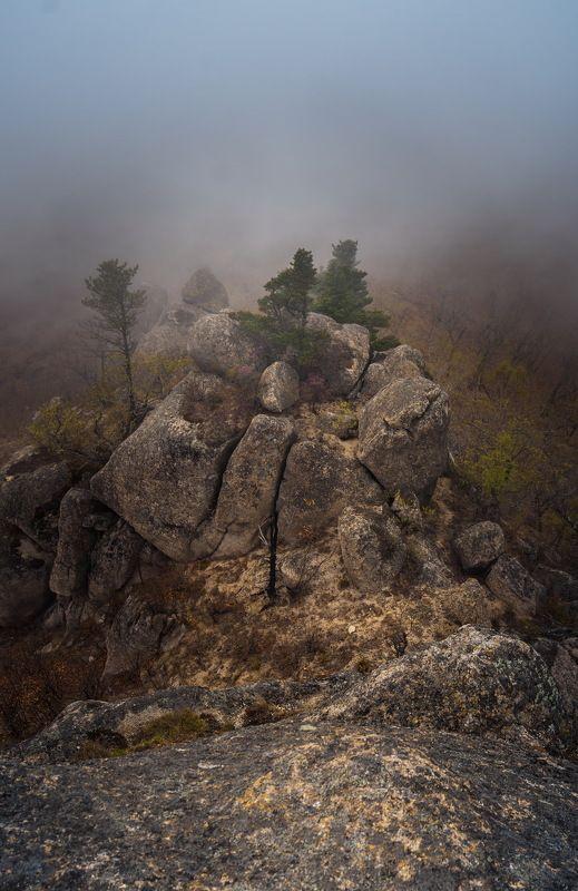В объятиях туманаphoto preview