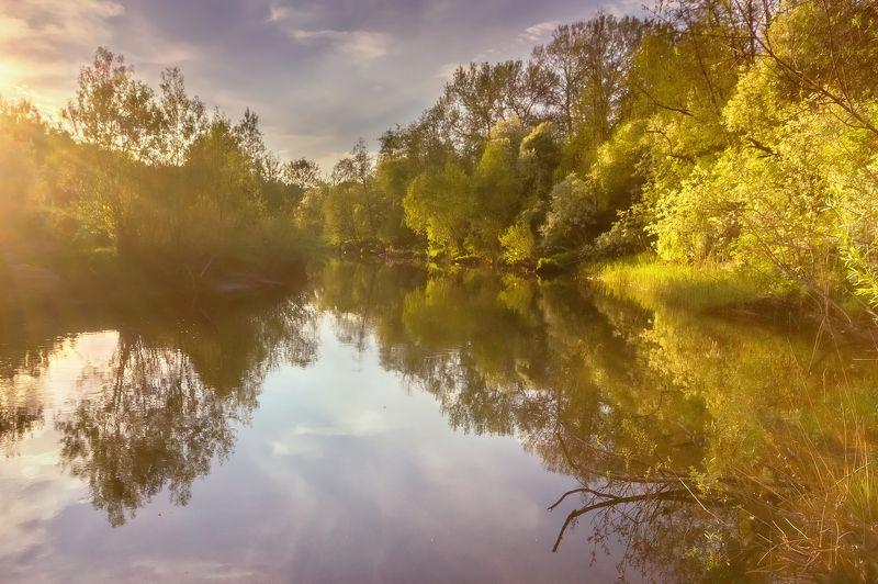река, черемуха, рыбинск, лето, весна, вода Весенняя рекаphoto preview