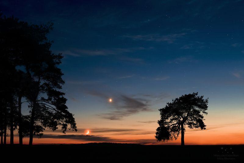 венера, месяц ночь, звезды, луна, закат, поле, одинокое дерево Закатphoto preview