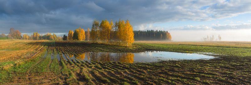 пейзаж поле осень панорама латвия Утро в осеннем полеphoto preview